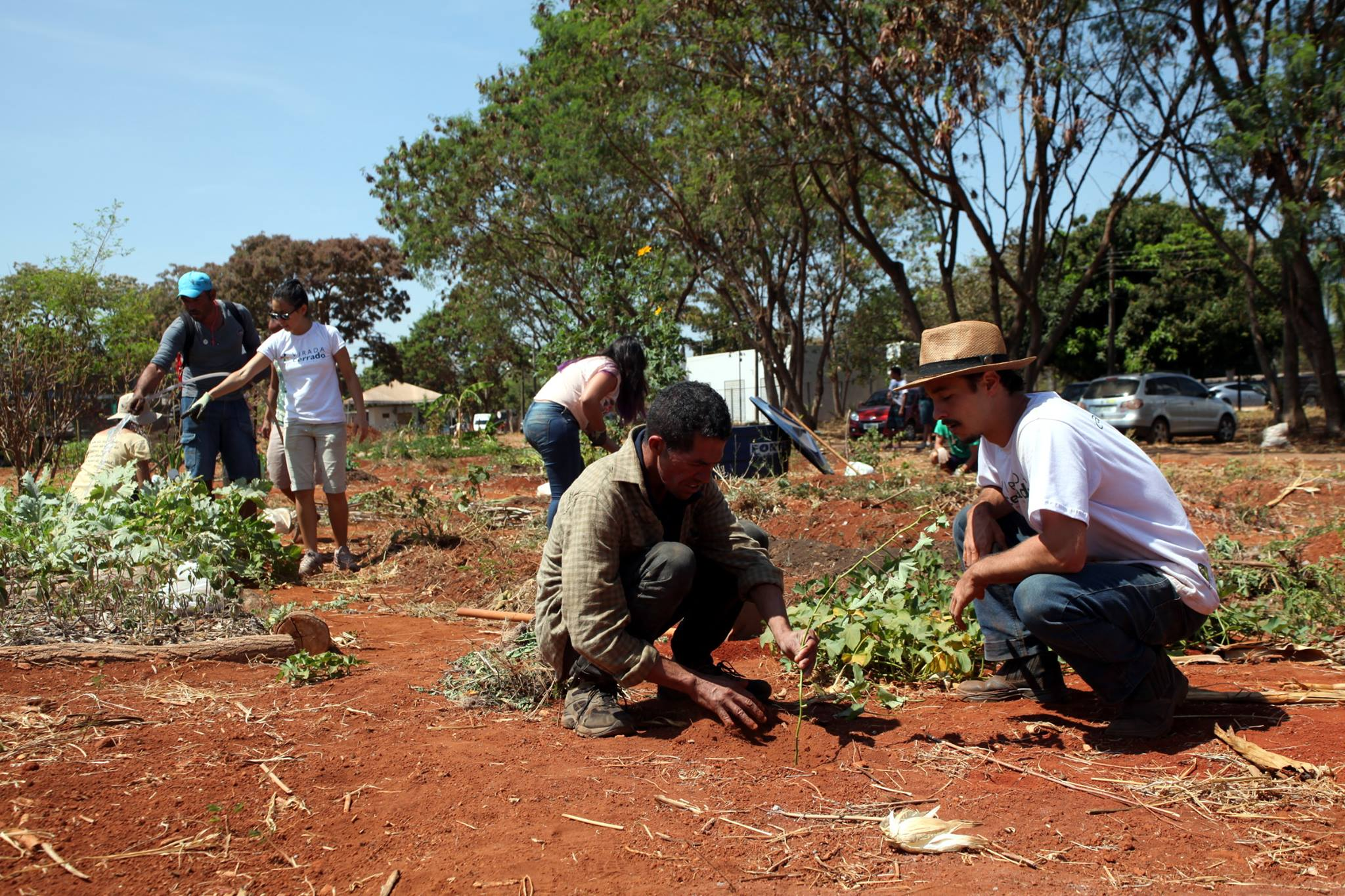 Projeto Equinócios: fortalecendo a dignidade humana por meio da agroecologia